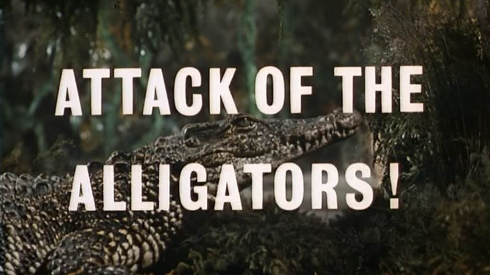 Thunderbirds Attack of the Alligators
